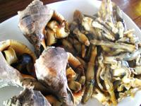 ニシとマテ貝の料理