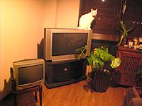 テレビが2台